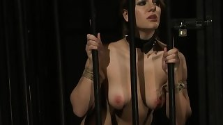Busty submissive doggystyled while gagging